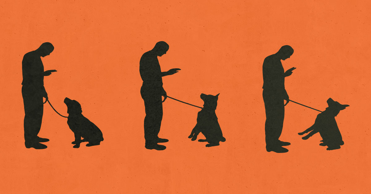 How Dog Training Is Affecting Prison Rehabilitation