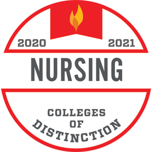 2020-2021 Colleges of Distinction Nursing badge